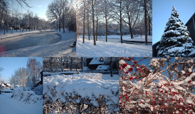 ニューへインで撮った雪の写真