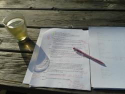 木曜日にも外で論文を書いた。 Donderdag, buiten mijn scriptie schrijven. <em>Thursday, writing my thesis outside.</em>