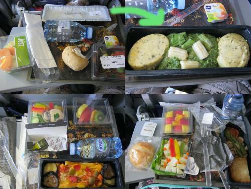 Vegetarian KLM airplane meals.