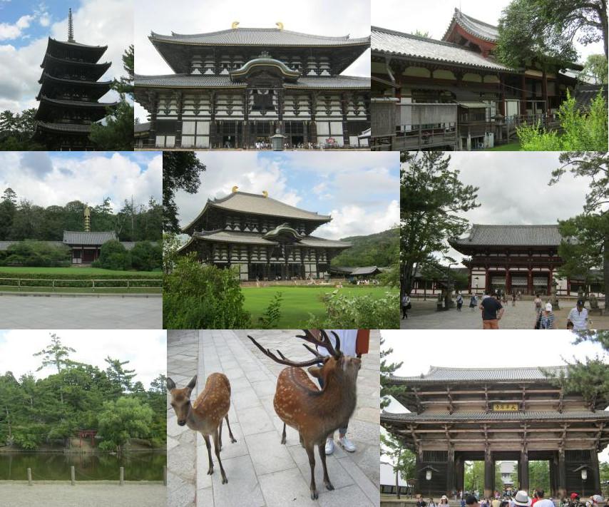 東大寺 (Toudai-ji)