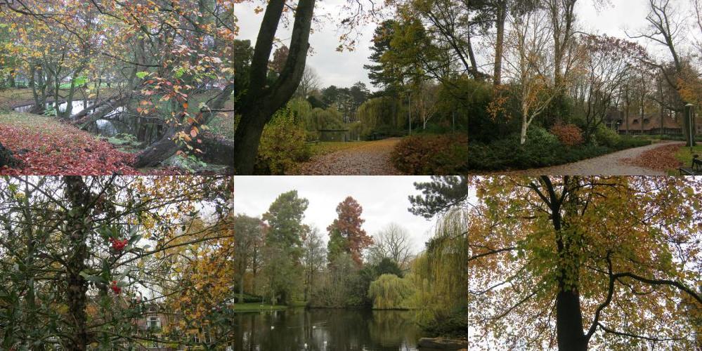 Wilhelmina park Utrecht