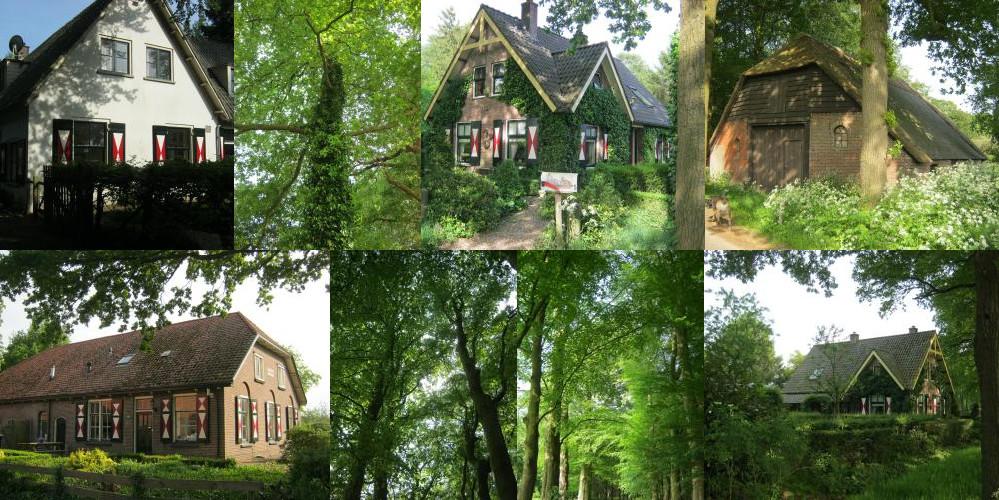Huizen in het bos bij Doorn
