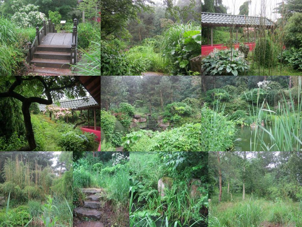 Mondo Verde Japanese and Chinese gardens.