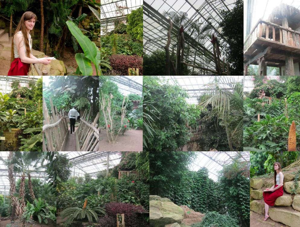 Mondo Verde rainforest tree house