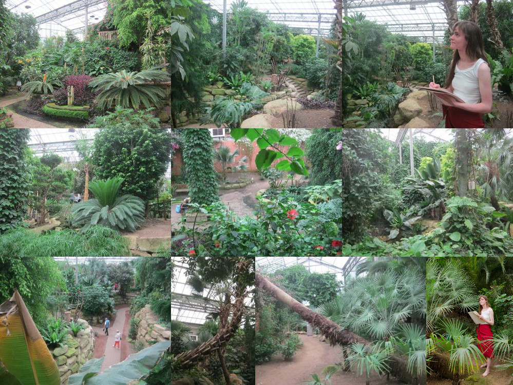Mondo Verde rainforest jungle