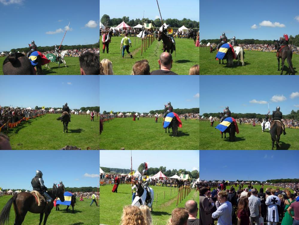 Castlefest horse show