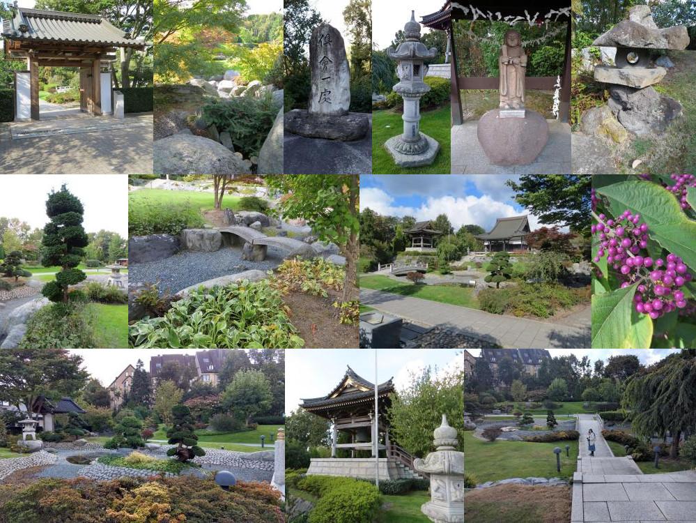 EKO Haus garden
