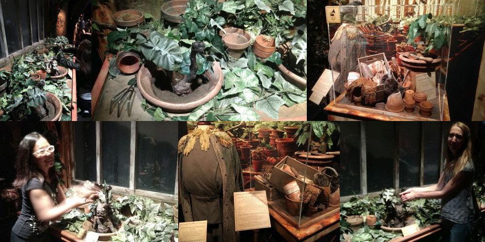 Harry Potter Exhibition: Herbology