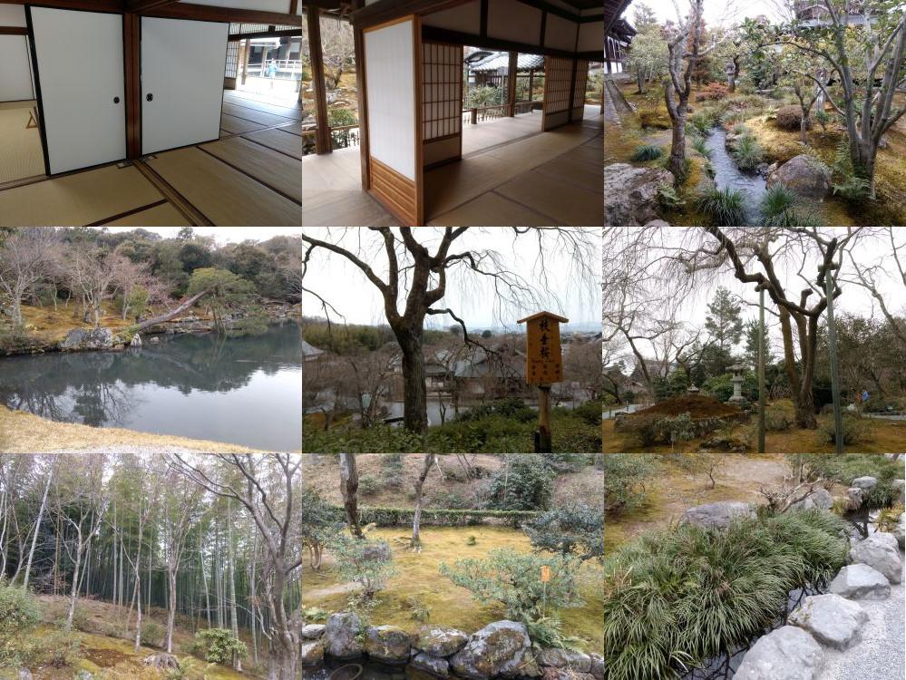 Tenryuuji, Kyoto