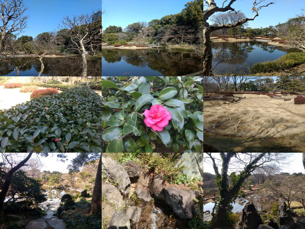 Tokyo Imperial Palace Gardens