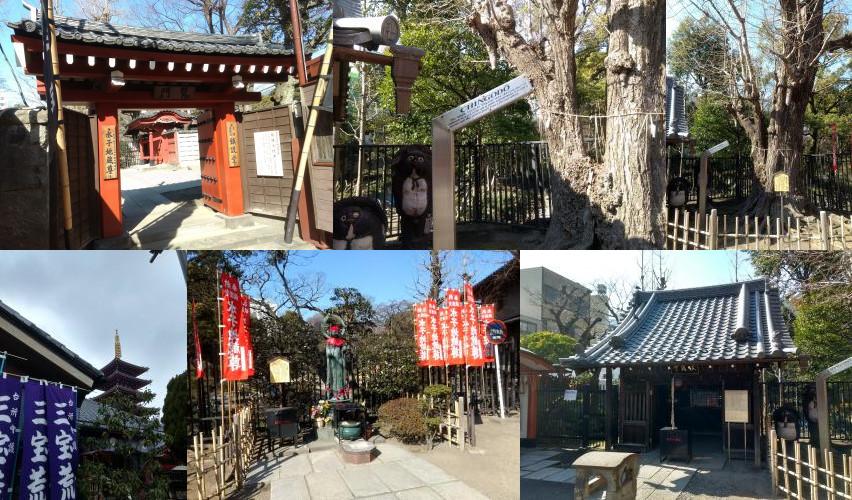 Chingo temple in Asakusa